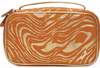 Palm_Desert_Orange_Grace_Brush_Case